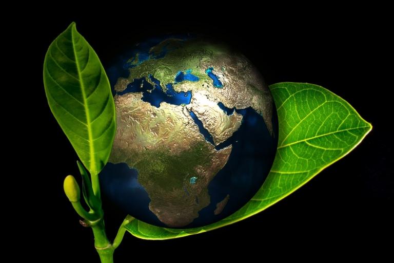 Environnement : la France et le Tchad renforcent leur partenariat en matière de développement durable