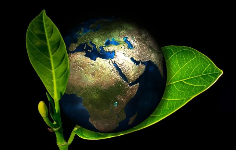 Des pays africains créent un fonds environnemental pour promouvoir le développement durable