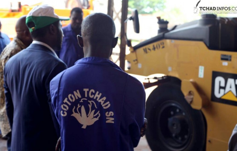 Tchad : les arriérés des paysans sont payés et le coton enlevé