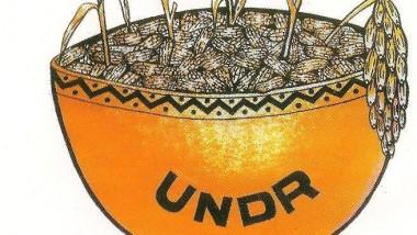 Tchad : le congrès de l'UNDR est annulé in extremis