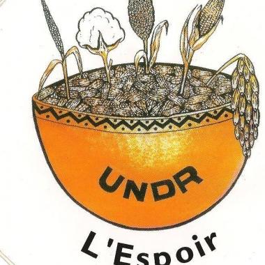 Tchad: L'UNDR dénonce la non délivrance du Passeport depuis quelques mois par les services de l'immigration