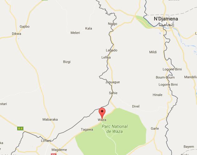 Cameroun : huit civils tués dans un attentat suicide dans l'Extrême-Nord
