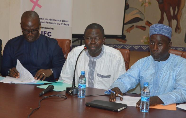 PND: le Tchad va à la recherche de 3.710,88 milliards pour combler le gap global prévisionnel