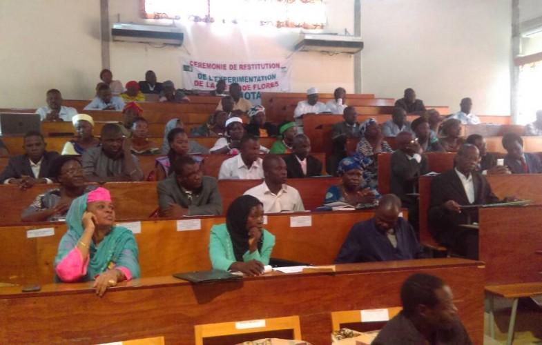 """Tchad : """"Méthode Flores Gong Nota"""", un nouveau système d'écriture expérimenté dans quelques écoles"""