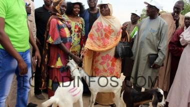 Crise au Lac Tchad: Les parlementaires s'impliquent dans la recherche de solutions durables