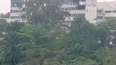 Cameroun : Un incendie ravage une partie de l'Assemblée nationale