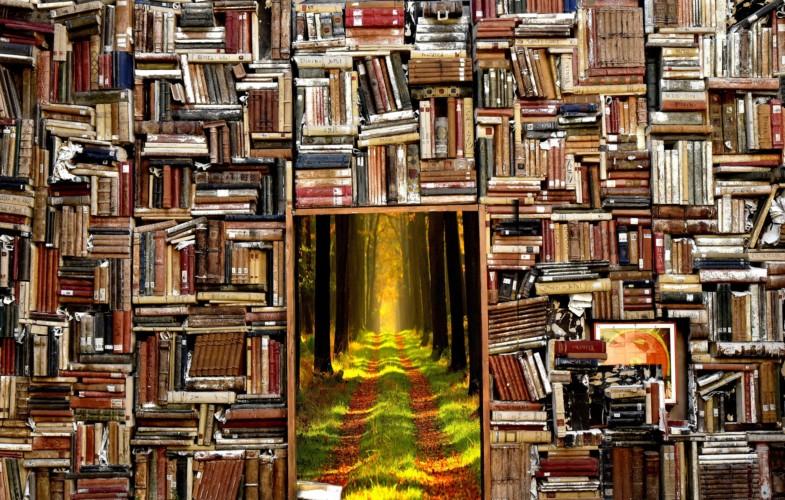 Novembre, mois de célébration du livreet de la lectureau Tchad