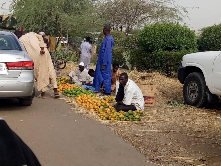 N'Djamena : les vendeurs de mangues envahissent les bordures de route