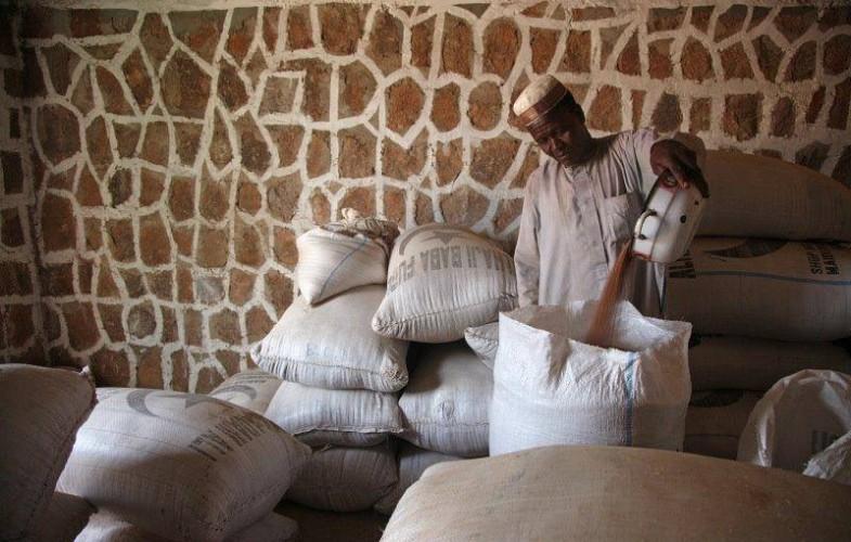 Lac Tchad : quatre choses à savoir sur le projet RESILAC