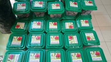 «L'anacardier peut devenir le nouvel or vert du Tchad» Mian-hingam Suria