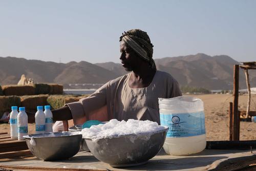 """Tchad : la filière """"lait local"""" a d'énormes potentiels économiques"""