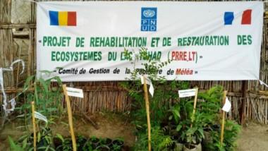 Environnement : le PNUD appuie un projet de sauvegarde des écosystèmes au Lac Tchad
