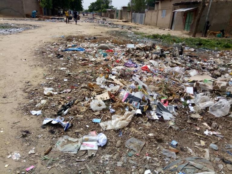 Saison pluvieuse : les ordures de plus en plus sollicitées par les N'Djamenois