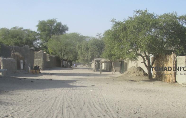Tchad : un sud-africain abattu par son garde-corps au Lac