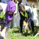 Tchad : le couple présidentiel prend part à des travaux communautaires