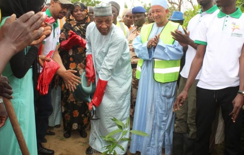 Tchad : le délégué du gouvernement et les maires mettent en terre des plants à N'Djaména