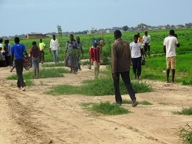 Environnement : Des jeunes plantent 883 arbres au cimetière de Toukra