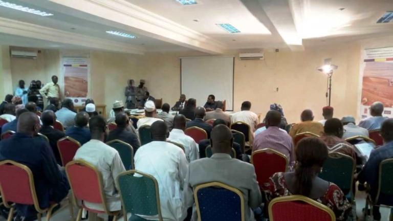Tchad : œuvrer davantage pour rendre effectif le système LMD dans les universités