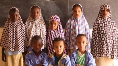 Niveau du système éducatif 3/11 : quand la baisse de niveau s'accentue au Niger
