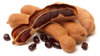 CILSS : les produits non ligneux, des atouts à valoriser