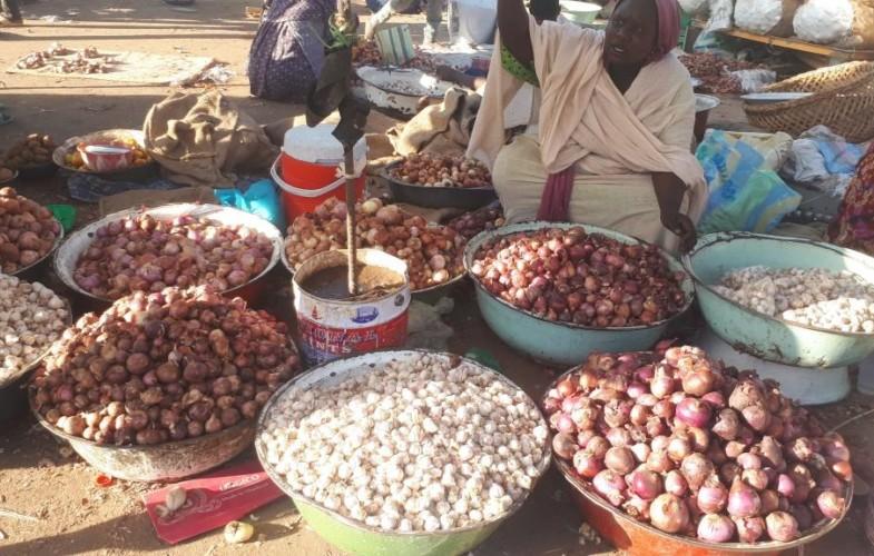 Société : L'oignon devient de plus en plus rare et cher à N'Djamena
