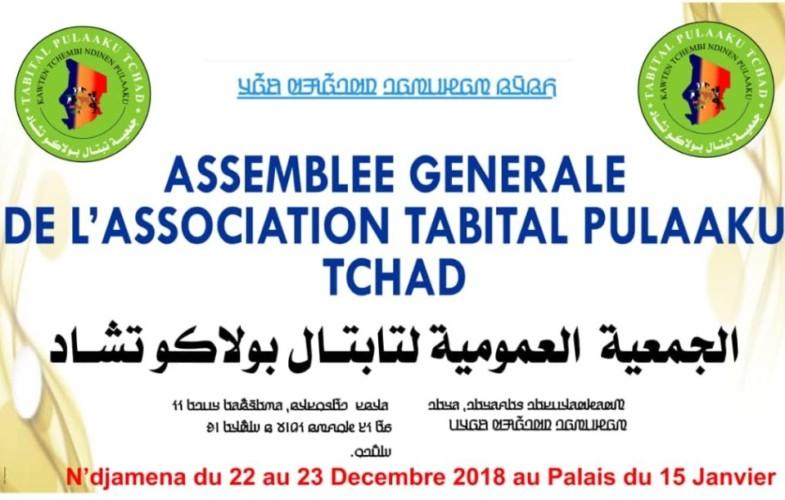 Massacre des Peuls au Mali : la communauté peule du Tchad condamne l'attaque et présente ses condoléances aux familles