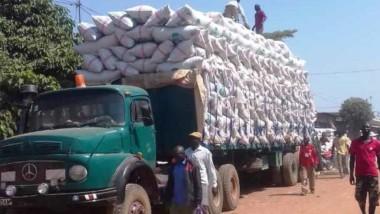 Tchad: un groupe privé prélève des taxes sur les céréales dans le sud du pays