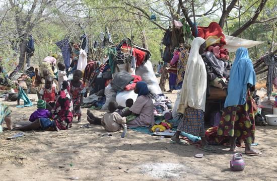 Tchad : nouvel afflux de réfugiés nigérians