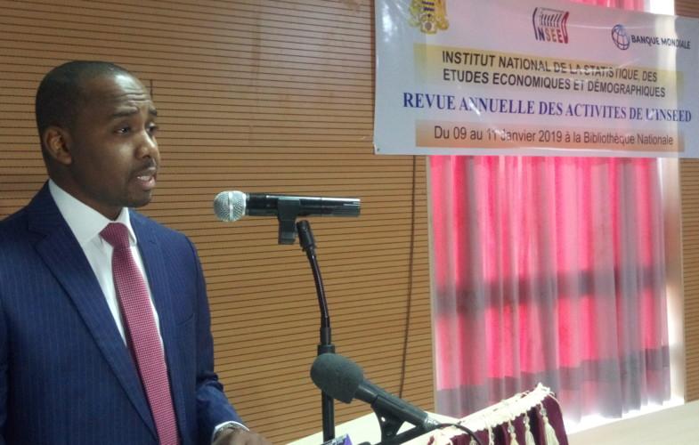 Tchad: l'INSEED passe en revue ses activités annuelles