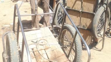 """Société : les """"Pousse-Pousse"""" ou Porte-tout sont-ils en train de disparaître à N'Djamena?"""