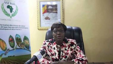 Tchad : N'Djamena accueillera le premier Salon africain de l'agriculture