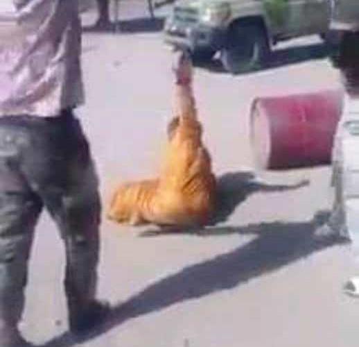 Tchad: « J'ai subi des tortures pires que ce que vous avez vu », Achta Abakar
