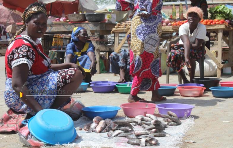 """La CNUCED recommande au Tchad la """"diversification"""" de son économie pour plus d'investissements"""