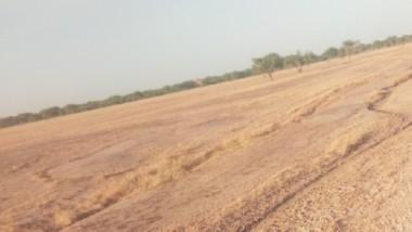 Changement climatique : le Tchad élabore  un guide pour  sensibiliser sur les risques