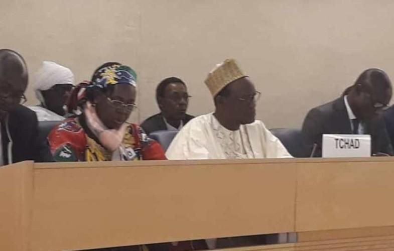 Tchad : le conseil des Nations-Unies aux Droits de l'homme valide l'Examen périodique universel présenté