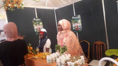 Safagri : des Tchadiens à la découverte des richesses agricoles d'ici et d'ailleurs