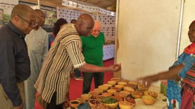 Safagri à N'Djamena : demandez le programme !