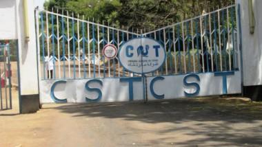 Économie : chemine-t-on vers un arrêt de la Compagnie sucrière du Tchad ?
