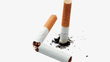 Lutte antitabac :  ce qu'il faut retenir de l'usage et de l'interdiction du tabac au Tchad