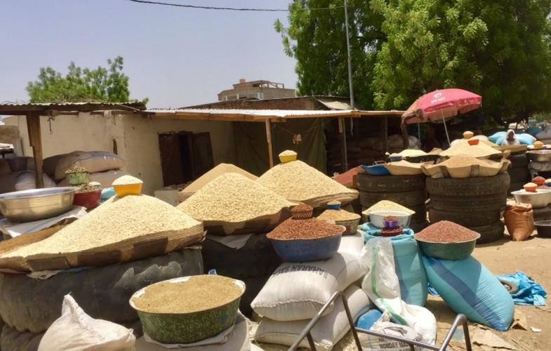 Covid-19 et crise alimentaire : une situation qui pourrait fragiliser les pays pauvres