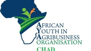 Aya boot camp 1ère édition : une initiative pour discipliner l'innovation dans le secteur agro-sylvo-pastoral