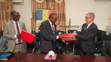 Tchad : le Groupe Olam règle la dette des producteurs de coton