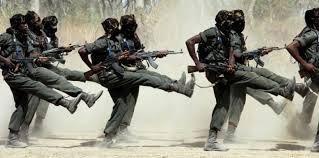 Tchad : 1 mort et 6 blessés causés par les agents des eaux et forêt lors d'une poursuite