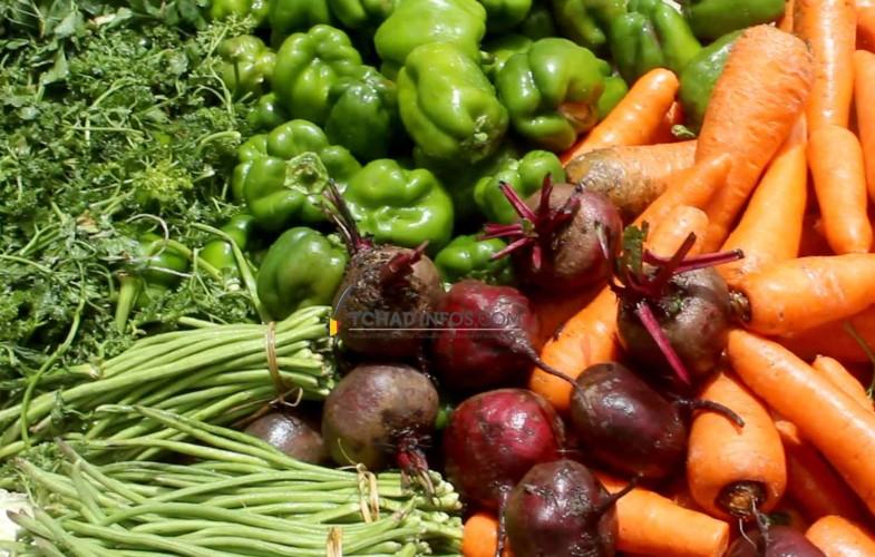 N'Djamena : c'est la saison des légumes et crudités