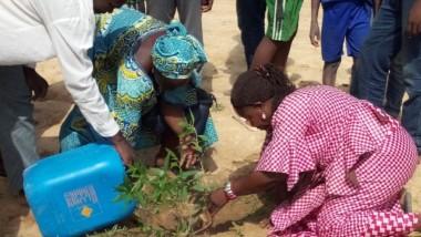 Tchad : une semaine verte pour reboiser le cimetière de Toukra