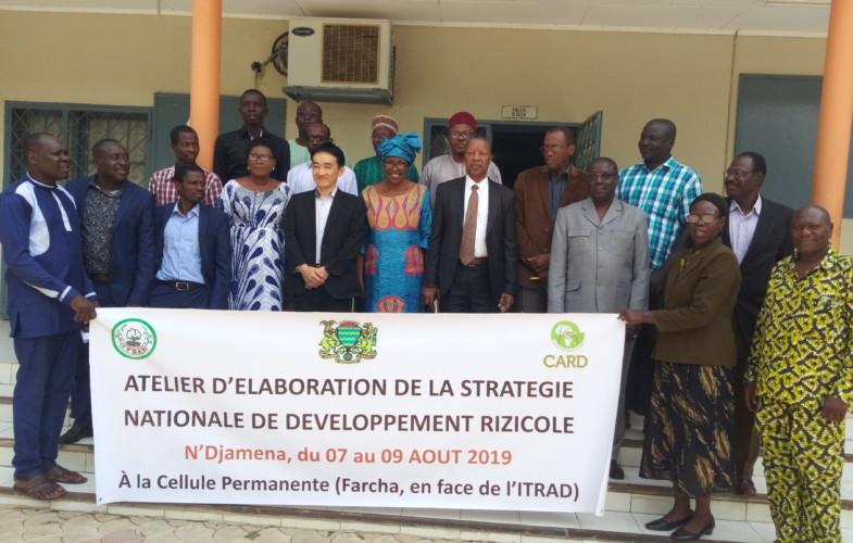 Projet CARD : le Tchad en voie d'élaborer sa stratégie nationale de développement rizicole