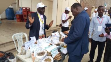 Tchad : pourquoi intégrer la médecine traditionnelle dans la formation universitaire