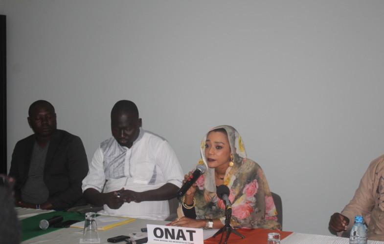 Tchad : l'ONAT met de l'ordre dans l'exercice de la profession d'architecte