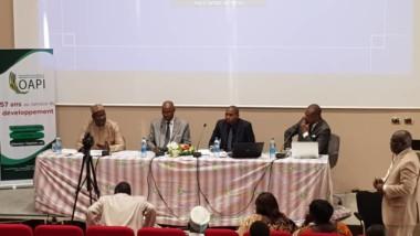 Anniversaire Oapi: «propriété intellectuelle et le changement climatique» au cœur de la célébration