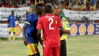 Football:  les Sao ont tenu tête aux crocodiles